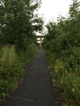 pathway towards motorway underpass