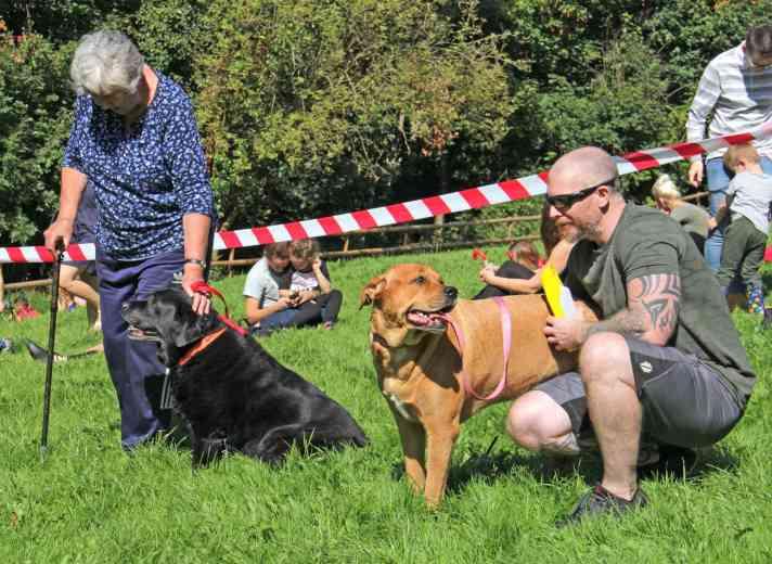 Woodland Park Dog Show 2017 IMG_9813