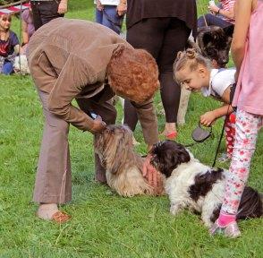 Woodland Park Dog Show 2017 IMG_9917