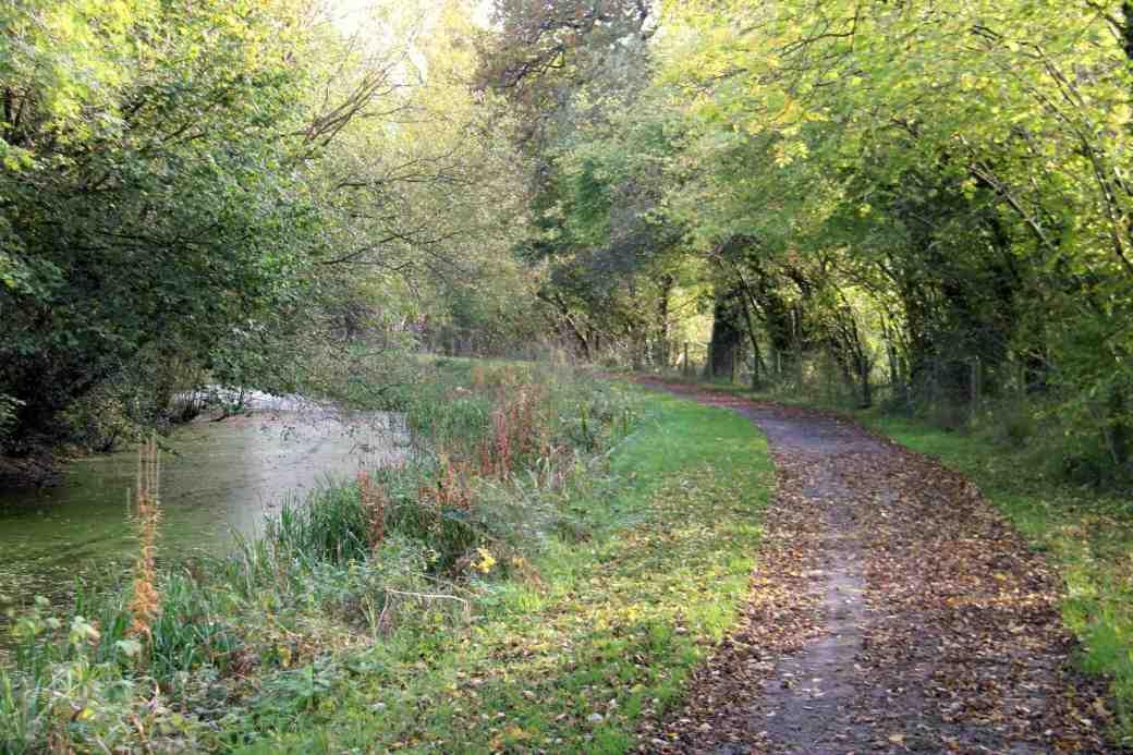 Canal walk 1
