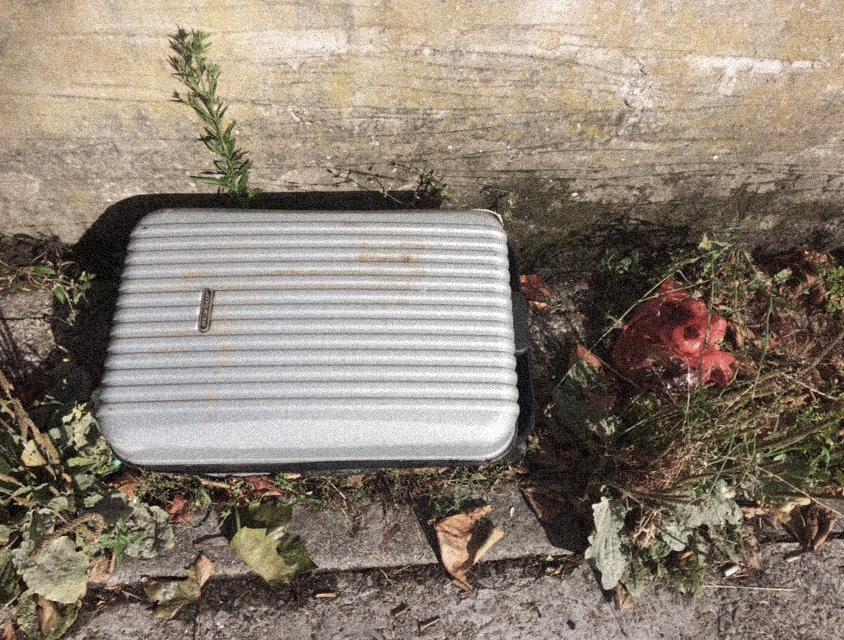 Rubbish - case