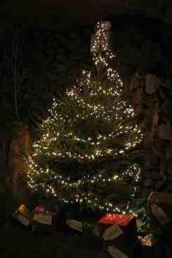 Caves - Christmas tree 2