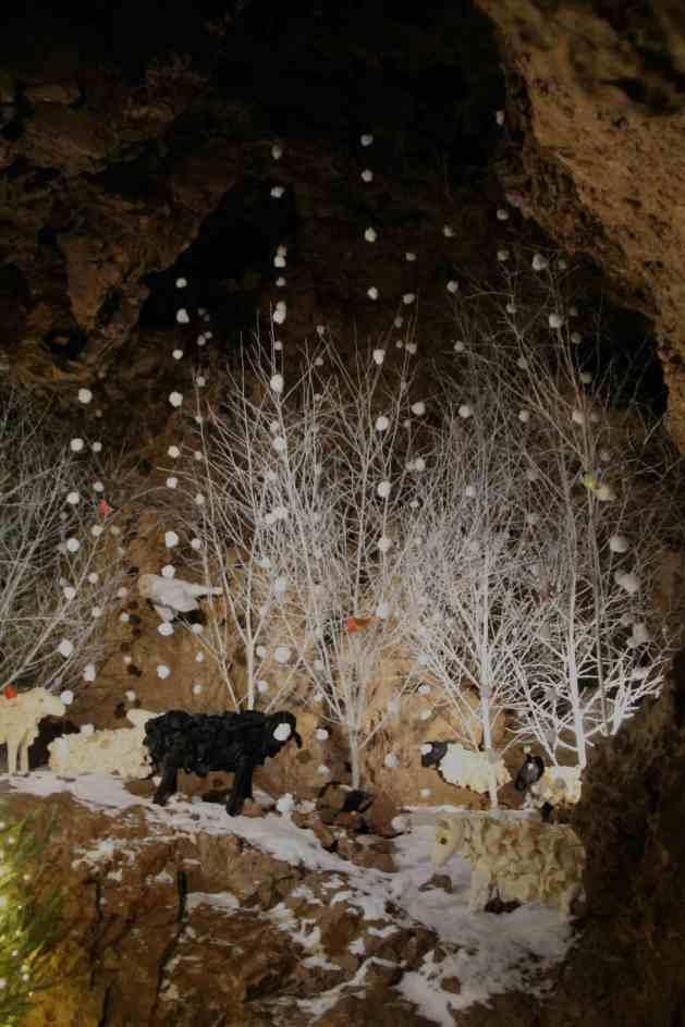 Caves - sheep 3