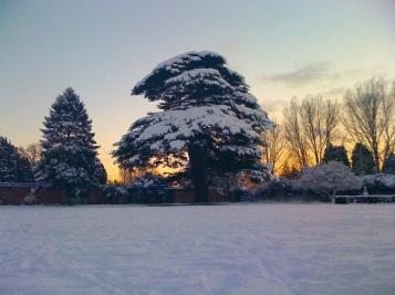 Snow Tredegar House
