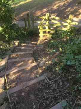 Woodland Park 06