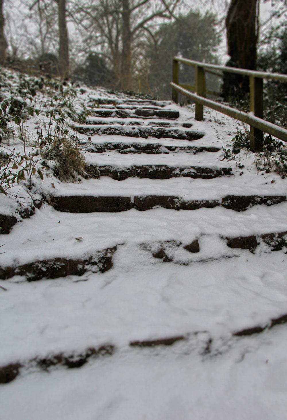 WP_snow_steps
